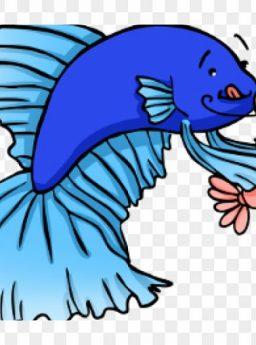 Gambar Berapa Lama Ikan Cupang Tahan Tidak Makan