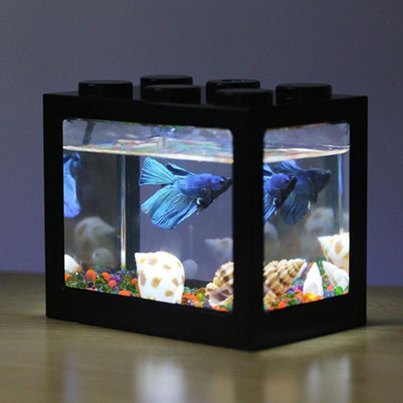 Akuarium Ikan Cupang